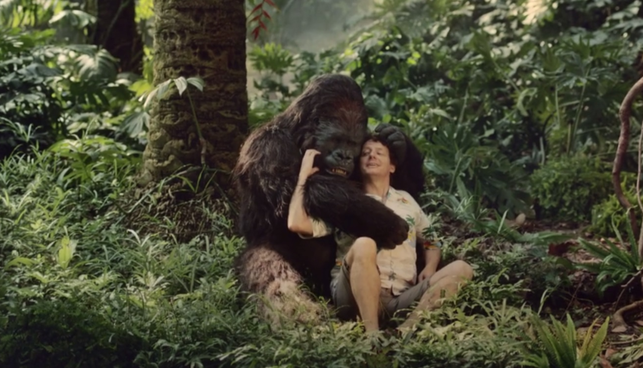 Девушка сосала гориллу фото 334-40