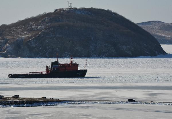 «Стрелка» Александра Мамута разработает проект развития острова российский