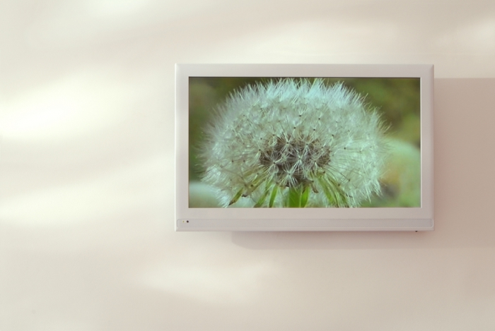 Вподъездах домов наЮго-Западе столицы появятся информационные экраны