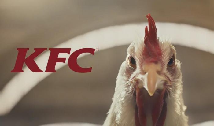 Курочки в рекламе KFC: слишком милые, чтобы их съели