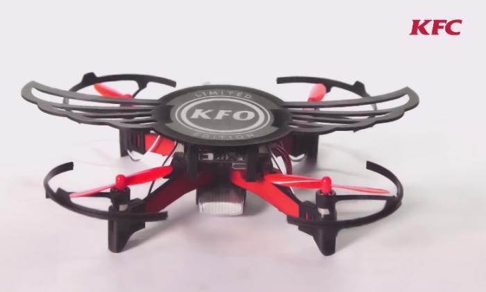 В Индии дроны полетят на куриных крыльях