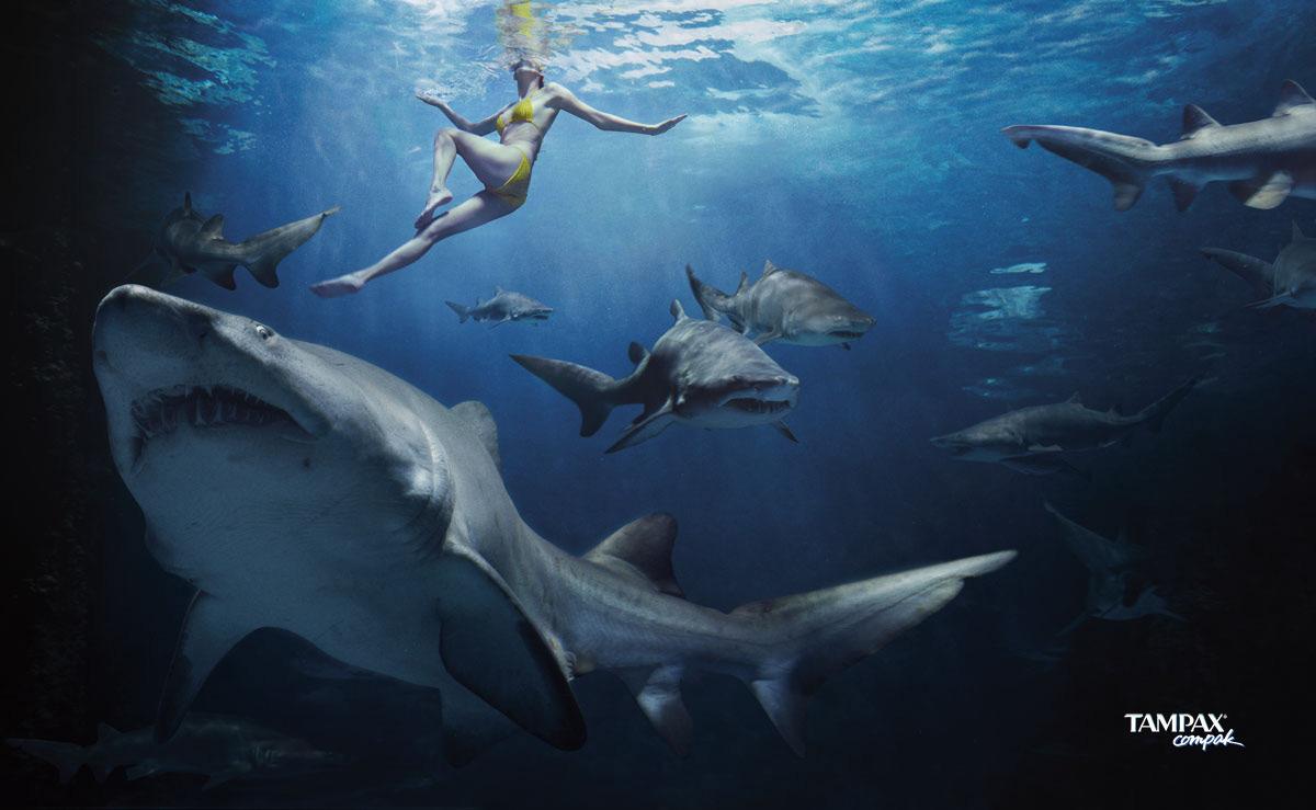 Great White Shark Ruler of the SeaMini Book and 8 Plush