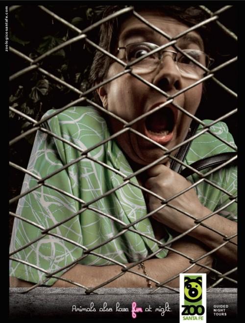 Реклама зоопарка ZOO santa fe