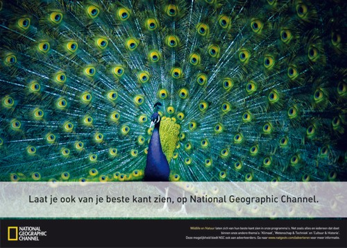 National Geographic от Euro RSCG Amsterdam