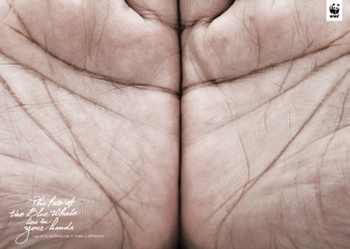 WWF от Ogilvy & Mather, India