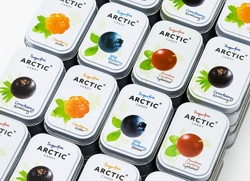 леденцы Sugarfree Arctic Candy