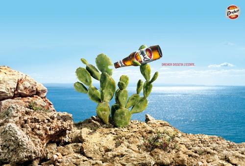 Растения спасаются пивом Dreher