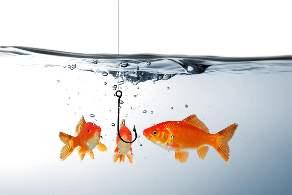 картинки рыбки для рыбалки