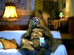 Смеющийся медведь (крабовые палочки)